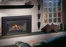 Regency Energy™ E21 Small Gas Insert