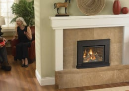 Regency Liberty L234 Small Gas Insert
